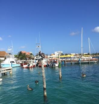 One of the marinas at Isla Mujeres