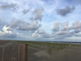 Elmer's Island is gorgeous!